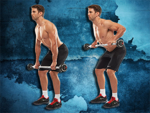 Bent-Over Rows Exercises Instructions